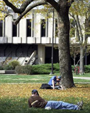 Students studying in front of Wescoe